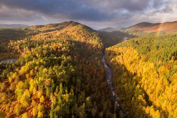 The River Affric runs through autumnal woodland along Glen Affric, Scotland.